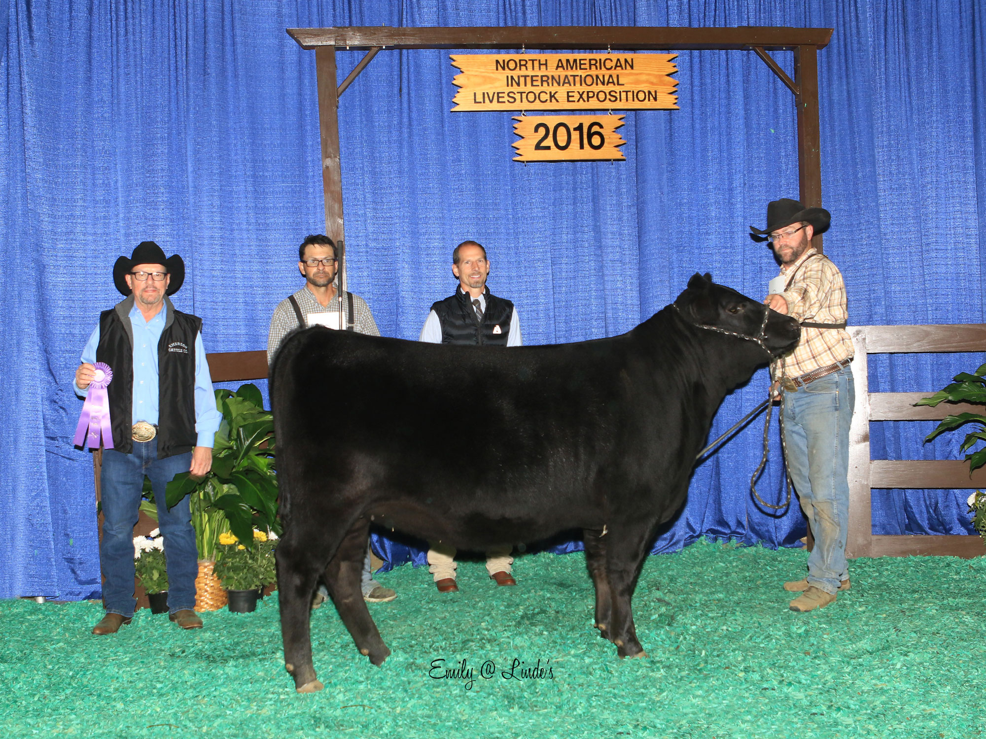 Emerson Cattle Company 2016 Winner